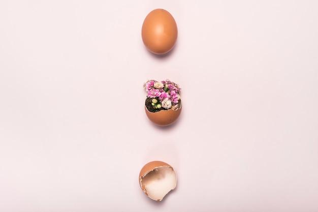 Bloem in gebroken ei op roze tafel