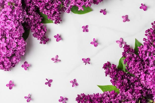 Bloem samenstelling. lente lila bloeiende bloemen op witte ondergrond