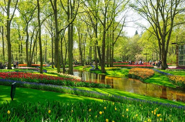 Bloembedden van keukenhof-tuinen in lisse, nederland