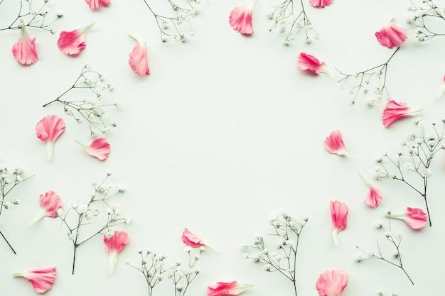 Bloemblaadje bloem op witte achtergrond met kopie ruimte.
