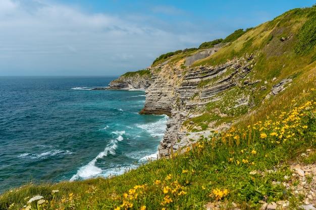 Bloemen aan de kust en de zee van het natuurpark van saint jean de luz genaamd parc de sainte barbe, col de la grun in het franse baskenland