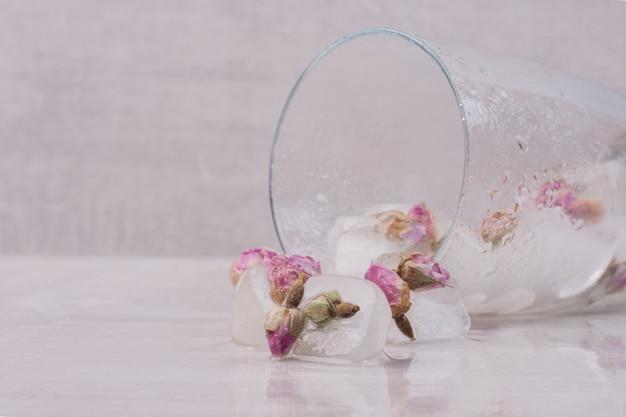 Bloemen bevroren in ijsblokjes op een witte ondergrond.