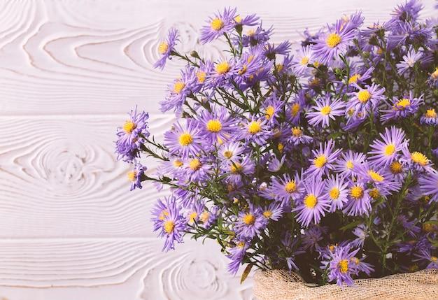 Bloemen bloemen lila pastel kleuren. kopieer ruimte