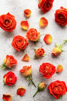Bloemen compositie frame gemaakt van rode rozen en bladeren op betonnen ondergrond