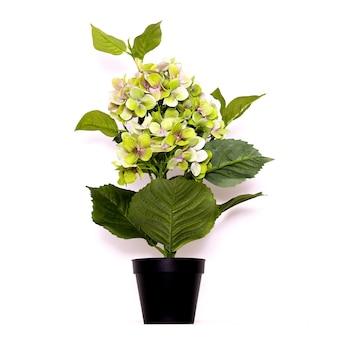 Bloemen decor. minimale platliggende ontwerpkunst