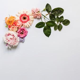 Bloemen decoratieve witte achtergrond