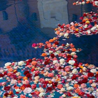 Bloemen die op zwembad in kasbah tamadot, asni, marokko drijven