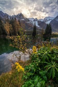 Bloemen en bloesems in een meer in chamonix met reflectie op het water met bergen