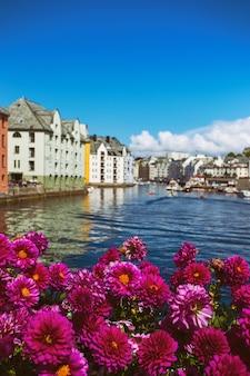 Bloemen groeien in de straten van de beroemde noorse stad alesund