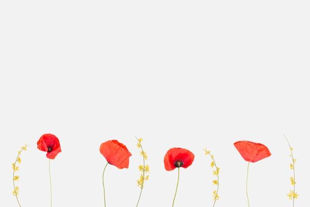 Bloemen liggen plat