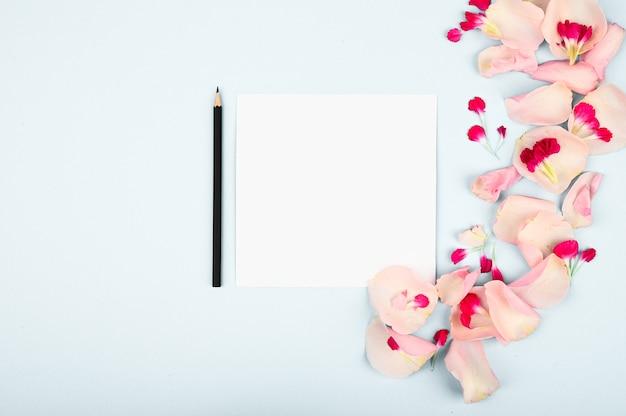 Bloemen met document kaartnota die op witte achtergrond wordt geïsoleerd. creatieve layout.