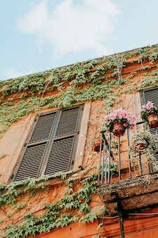 Bloemen op een balkon in florence, italië
