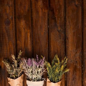 Bloemen op oud hout