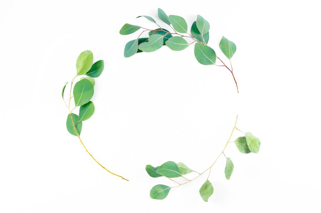 Bloemen rond frame, eucalyptusbladeren op witte achtergrond.