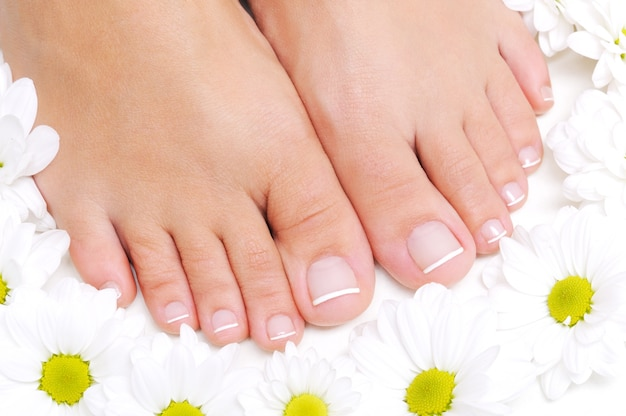 Bloemen rond mooie vrouwelijke voeten met de franse pedicure