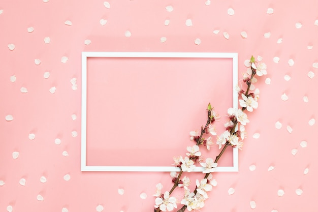 Bloemen samenstelling creatief. leeg fotokader, roze bloemen op het leven koraalachtergrond, exemplaarruimte.