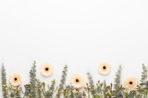 Bloemen samenstelling. frame gemaakt van pastel gerbera op witte achtergrond. plat leggen, bovenaanzicht, kopie ruimte.