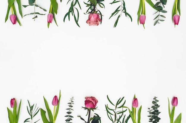 Bloemen samenstelling. frame gemaakt van roze bloemen en eucalyptustakken op witte achtergrond. valentijnsdag, moederdag, womens dag concept