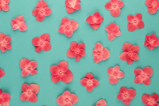 Bloemen samenstelling. patroon gemaakt van roze bloemen achtergrond