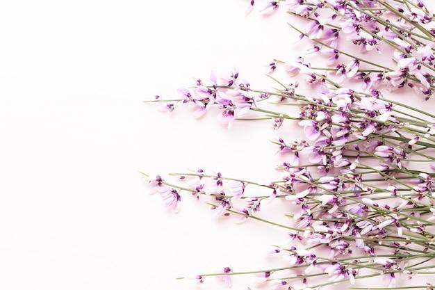 Bloemen samenstelling. roze bloemen op roze pasen, de lenteconcept.