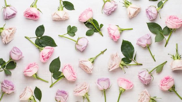 Bloemen valentijn dag samenstelling. frame gemaakt van roze roos op grijze tafel