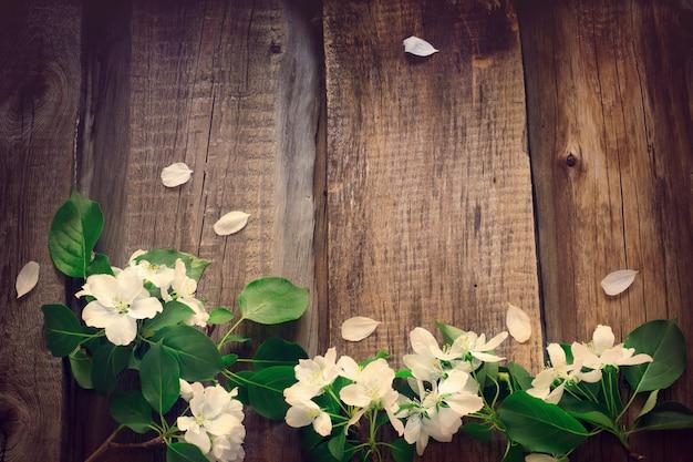 Bloemen van appel op een houten bord