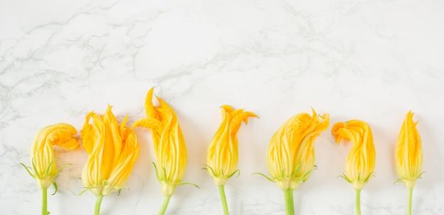 Bloemen van courgette tegen de achtergrond van marmer