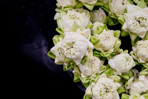 Bloemen van de bloemisterij de witte lotusbloem in vaas.