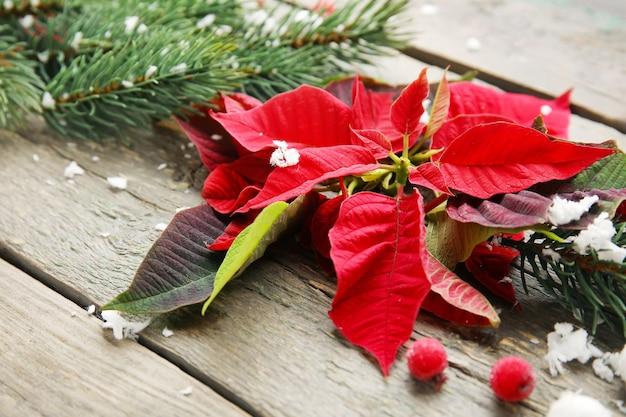 Bloemen van kerstplant poinsettia en decor op houten tafel