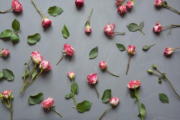 Bloemendiepatroon van roze struikrozen, groene bladeren op grijs wordt gemaakt