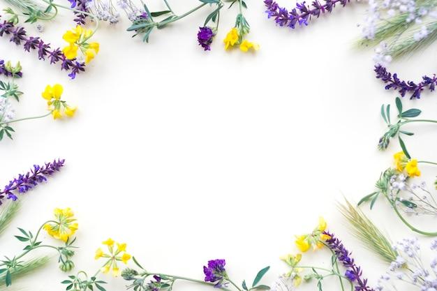 Bloemengrens op witte achtergrond wordt geïsoleerd die