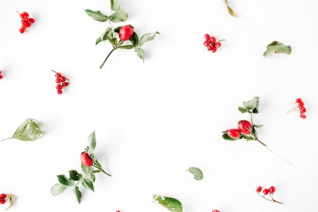 Bloemenkader met minimaal creatief patroon van de bessenregeling op wit.