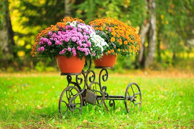 Bloemenmand op stam van een oude fiets provençaalse tuindecoratie bloemen bezorgen online bestellen...