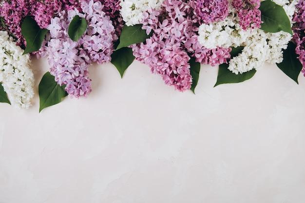 Bloemenpatroon van een tak van lila op een trendy steen roze achtergrond