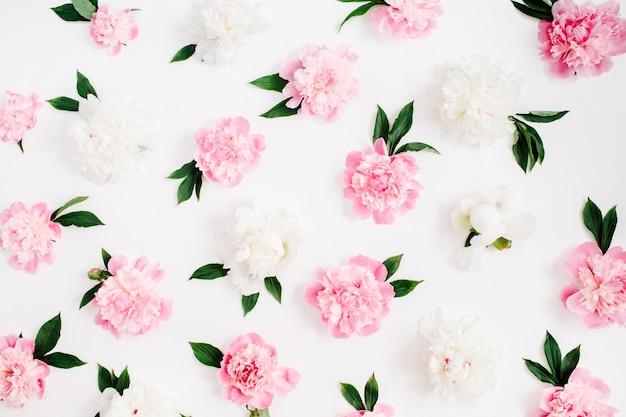 Bloemenpatroon van roze en witte pioen bloemen, takken, bladeren en bloemblaadjes op witte achtergrond. platliggend, bovenaanzicht