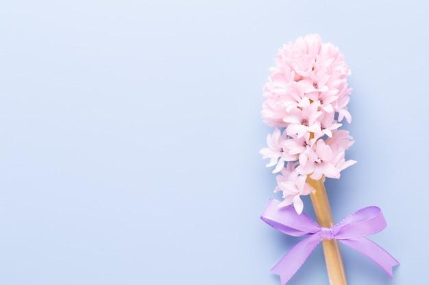 Bloemensamenstelling met hyacinten. lentebloemen op kleur.