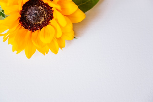 Bloemensamenstelling met zonnebloem op bovenkant