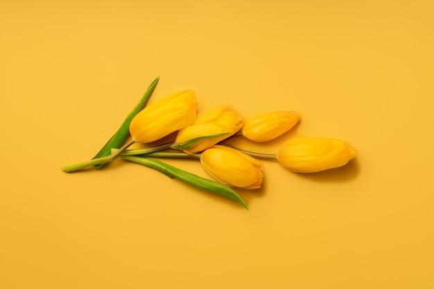 Bloemensamenstelling van gele tulpen op een gele achtergrond