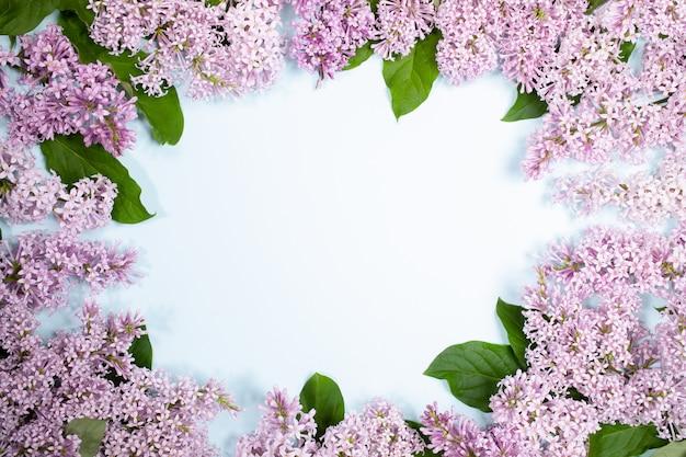 Bloemensamenstelling van lila bloemen op lichtblauwe achtergrond met exemplaarruimte.