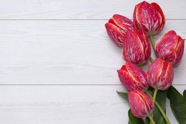 Bloementulpen. boeket van vijf geel rood gestreepte tulpen op een witte houten vloer.