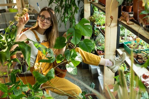 Bloemist geniet van plantenverzorging in kas of bloemenwinkel