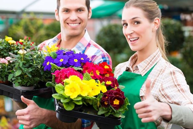 Bloemisten of tuinders in bloemenwinkel, kas of kwekerij