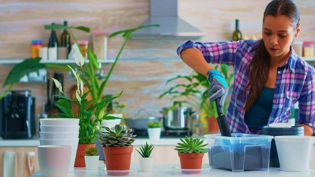 Bloemistvrouw die planten in de keuken controleert. met behulp van vruchtbare grond met schop in pot, witte keramische bloempot en planten voorbereid voor herbeplanting voor huisdecoratie.