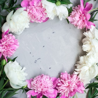 Bloemmotief, frame gemaakt van mooie roze en witte pioenrozen op grijze achtergrond.