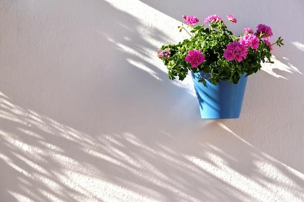 Bloempot die op witte muur in de oude stad van marbella verfraaien
