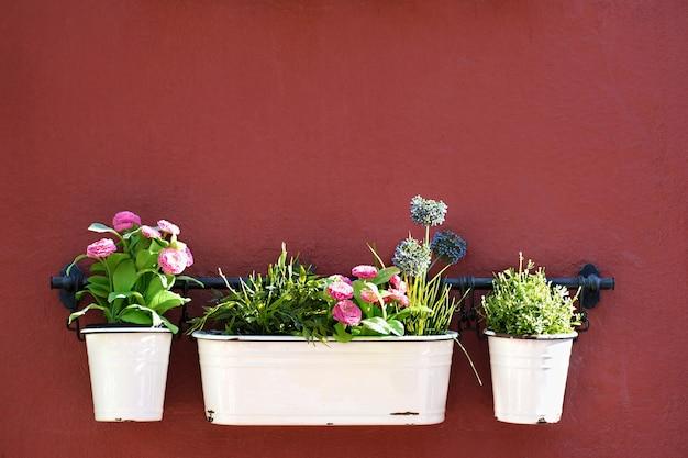Bloempotten die op rode muur in de oude stad van marbella verfraaien