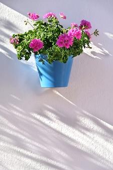 Bloempotten die op witte muur in de oude stad van marbella verfraaien