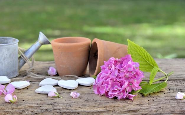 Bloempotten, gieter en roze bloem op een houten tafel in een tuin