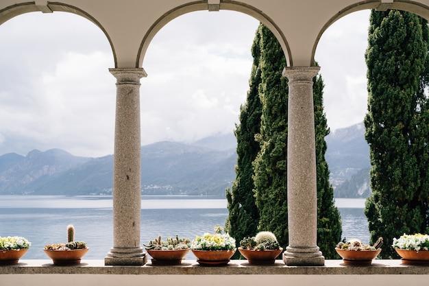 Bloempotten met vetplanten onder de bogen met uitzicht op het comomeer in italië