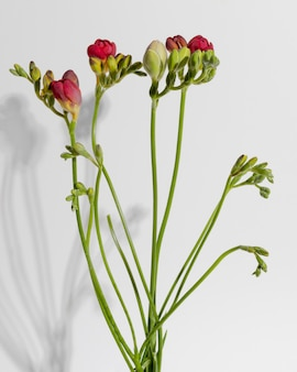 Bloesem bloem in vaas op tafel